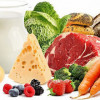 Здоровое питание: содержание белков, жиров и углеводов в продуктах