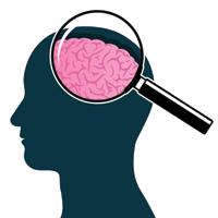 омега 3 и мозг